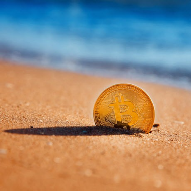 Cryptocurrencies: Head In The Sand Is Not An Option
